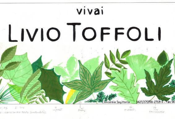 Dema Pubblicità-Bozzetto Vivai Toffoli 2
