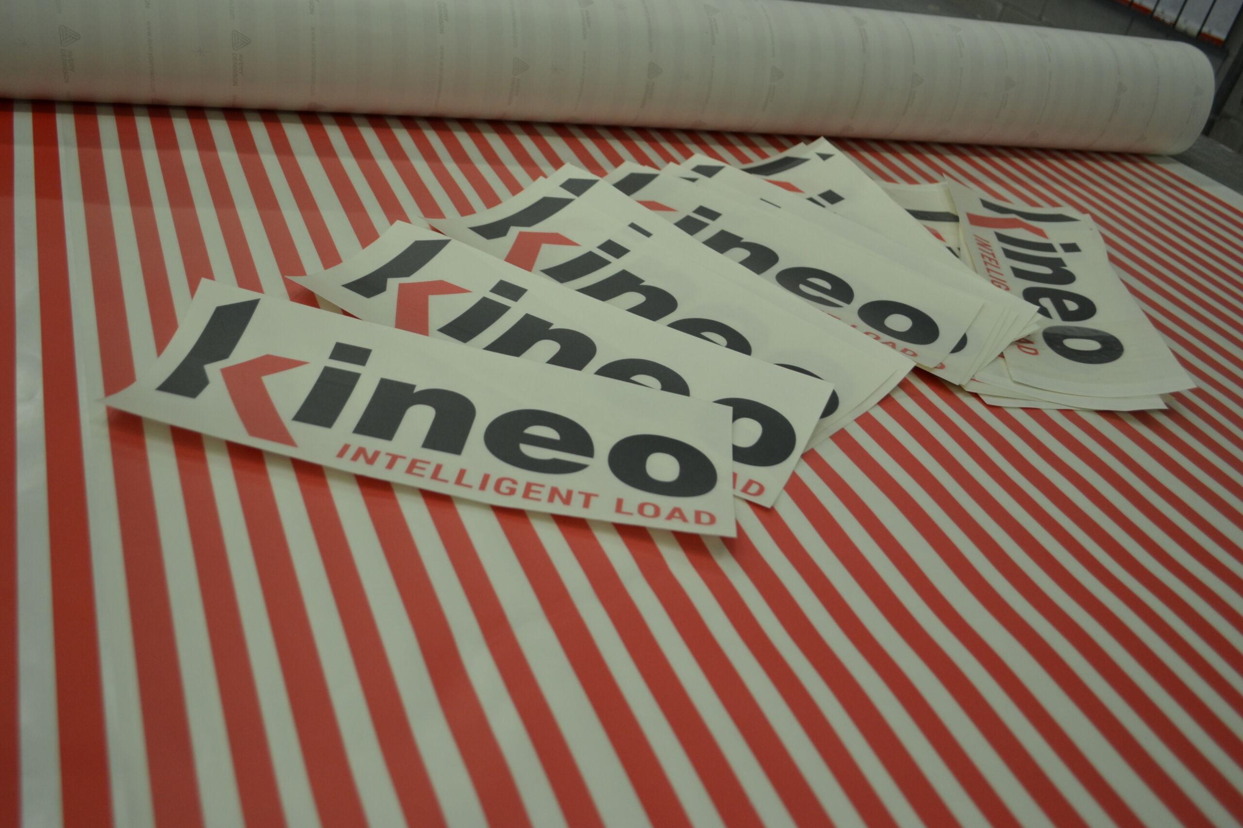 Dema Pubblicità-Etichetta Kineo intelligent load